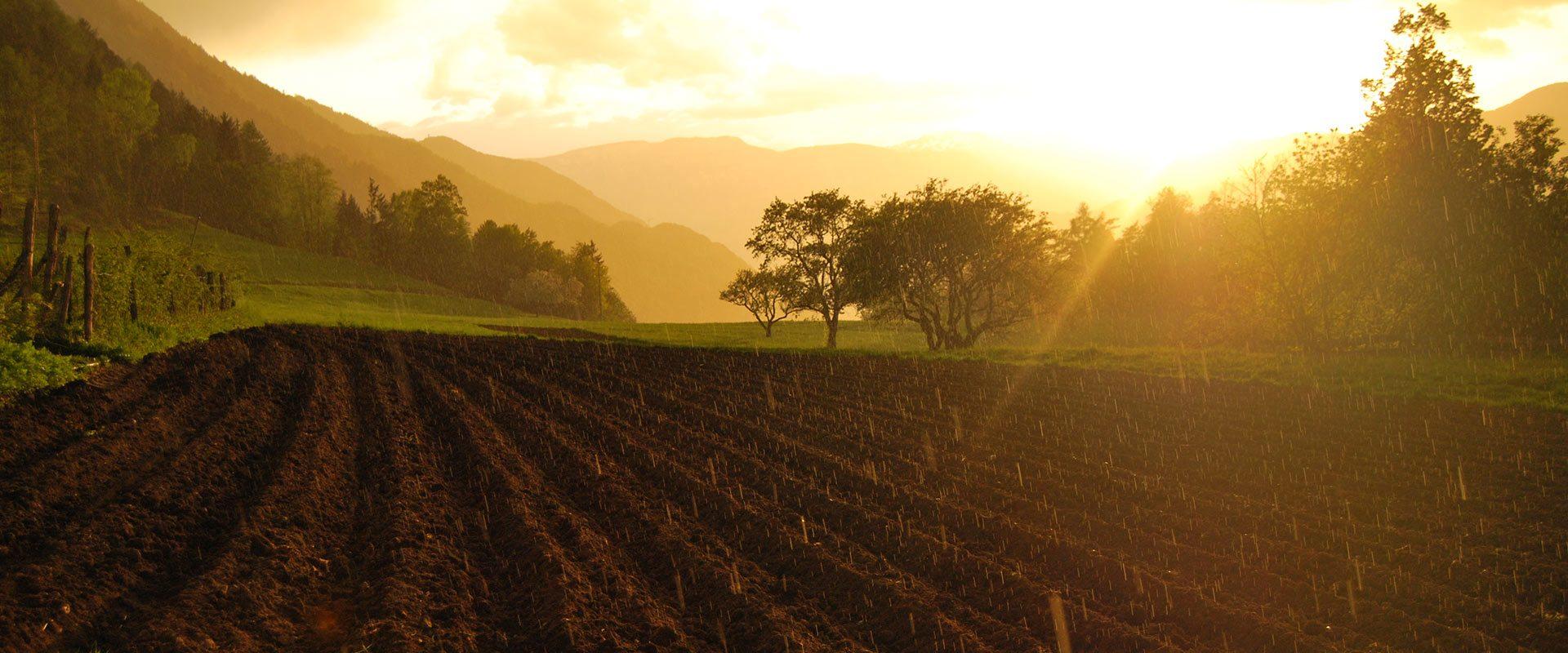 Steinegg im malerischen Eggental: Ein wahrhaft schönes Stück Südtirol