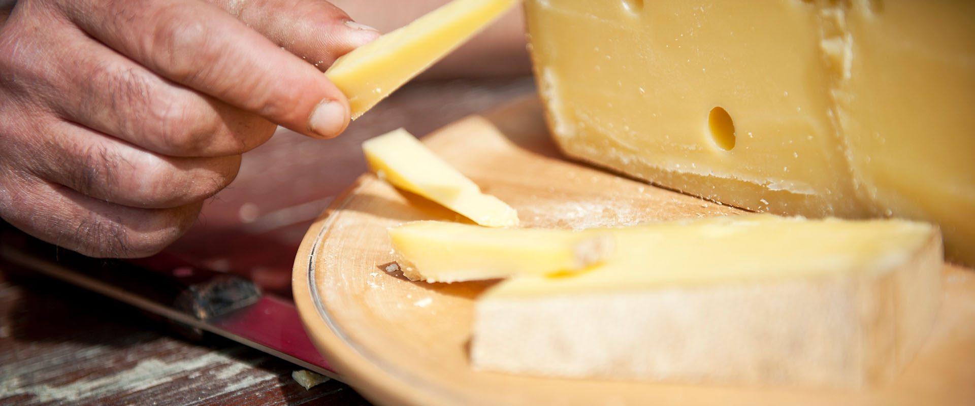 Traditionelle Käserei - Käse- und Milchprodukte